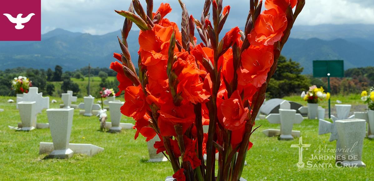 Instalaciones Memorial Jardines de Santa Cruz
